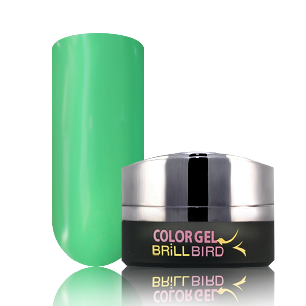 P5 BrillBird PAINT GEL - 5ml