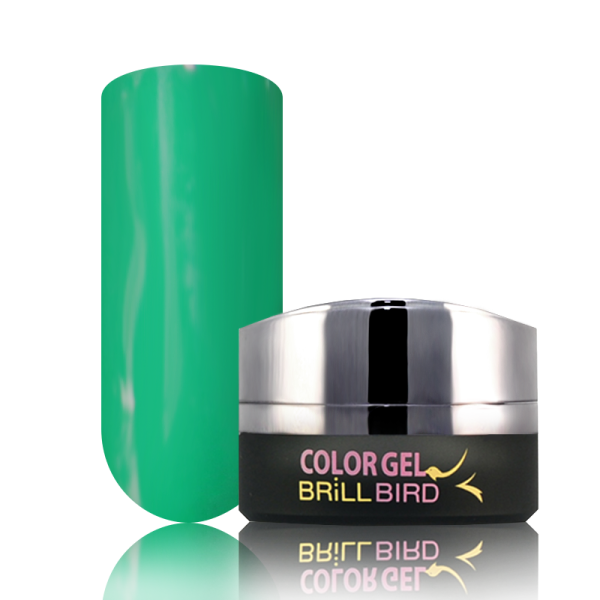 P6 BrillBird PAINT GEL - 5ml