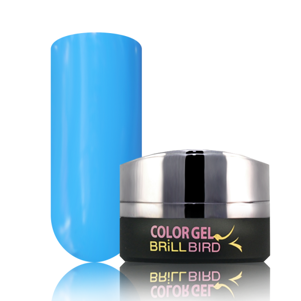 P8 BrillBird PAINT GEL - 5ml