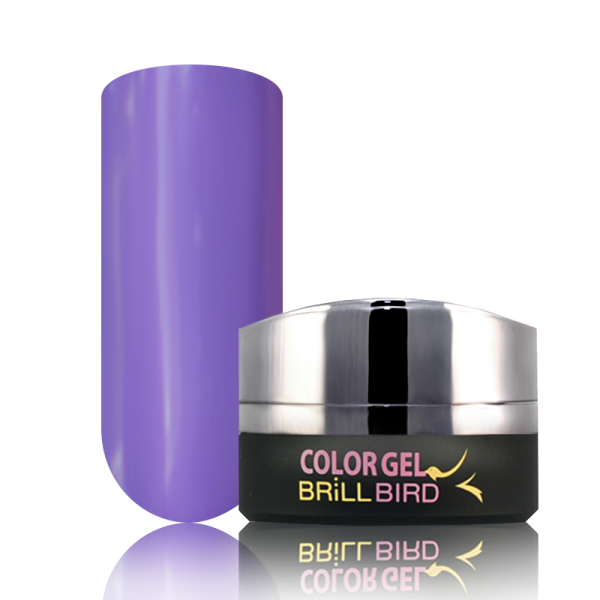 P9 BrillBird PAINT GEL - 5ml