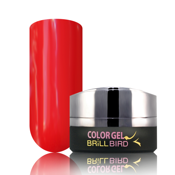 P15 BrillBird PAINT GEL - 5ml
